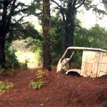 Auto, 2004