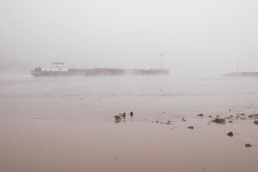 Fluss, 2010