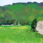 Wiese, 2004