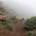 Nebel 1, 2004