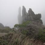 Nebel 10, 2004