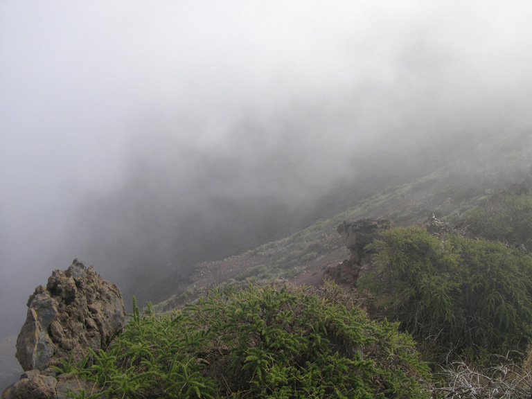 Nebel 7, 2004