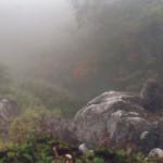 Nebel 4, 2002